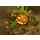 Изменения в игре 29.10.2015